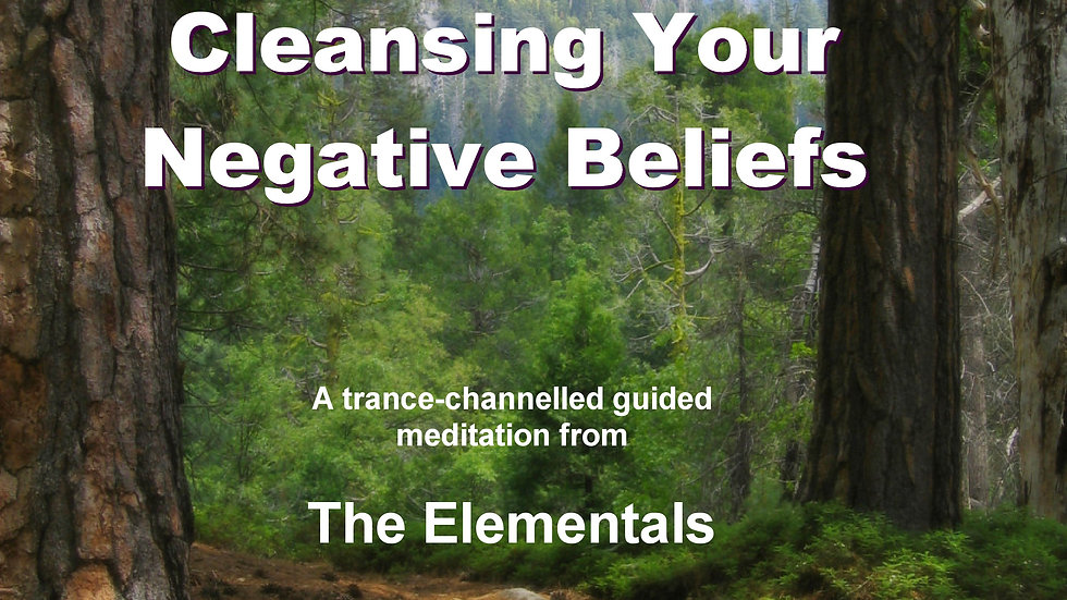 17 The Elementals – Cleansing your Negative Beliefs MP3