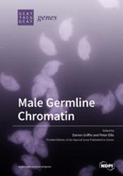 small_Male_Germline_Chromatin.jpg