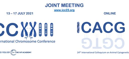 ICC-ICACG Programme Announced!