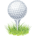 2-2-golf-ball-png-clipart-thumb.png
