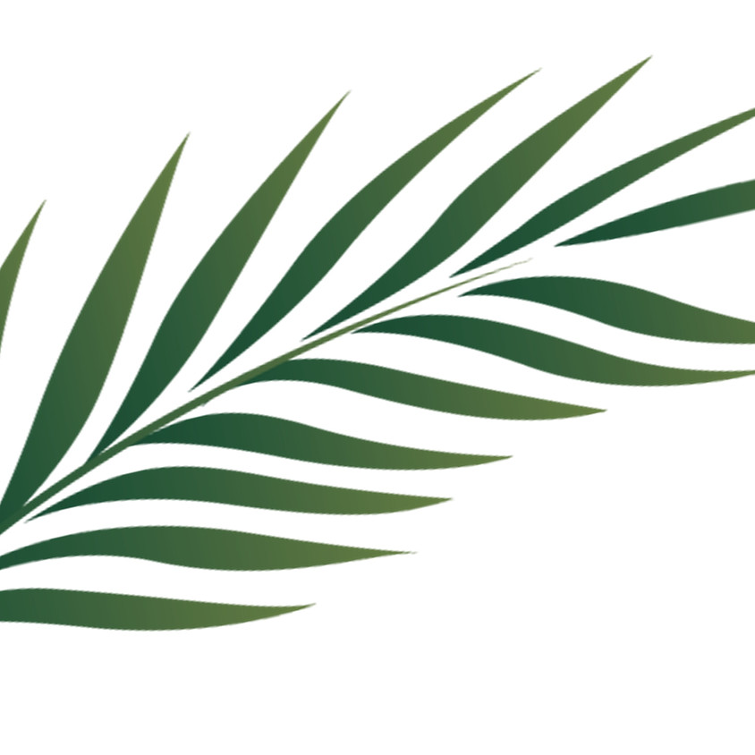 Palm Sunday: 8:30 a.m., Outdoor Worship