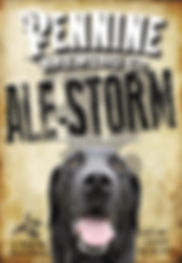 Ale Storm.jpg