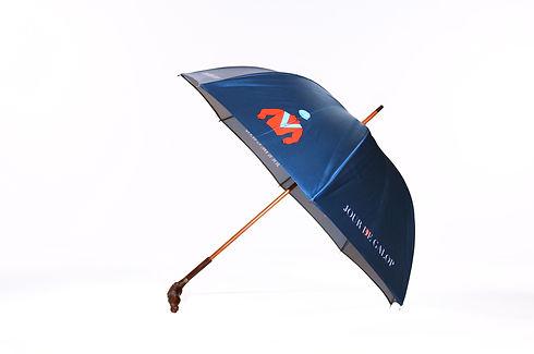 CDC_parapluie_JDG_entier.jpg
