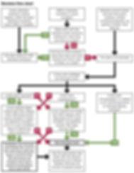 Decision-flow-chart.jpg