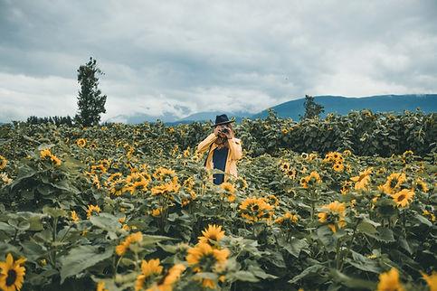 Sunnflower-8616.jpg