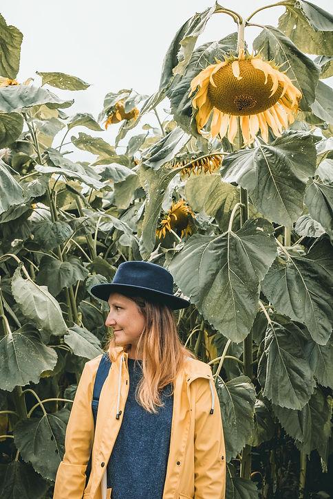 Sunnflower-8646.jpg