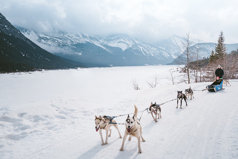 Banff_Winter_Dog_Sledding_Rockies_3315-2