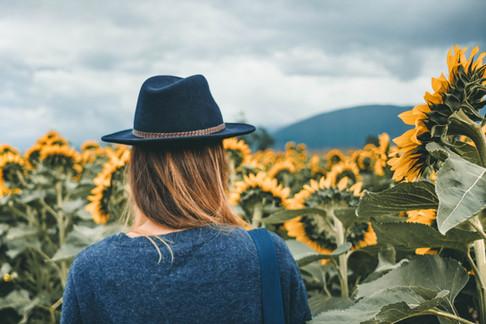 Sunnflower-8880.jpg