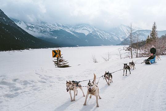 Banff_Winter_Dog_Sledding_Rockies_3315.j