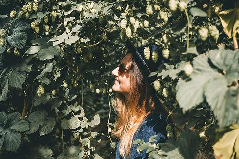 Sunnflower-8831.jpg