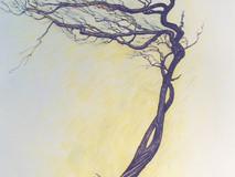 Novembre, émondeur des vieux arbres