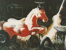Un cheval pour aller loin