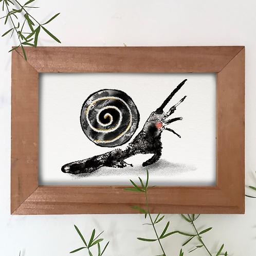 """Snail"" A6 postcard"