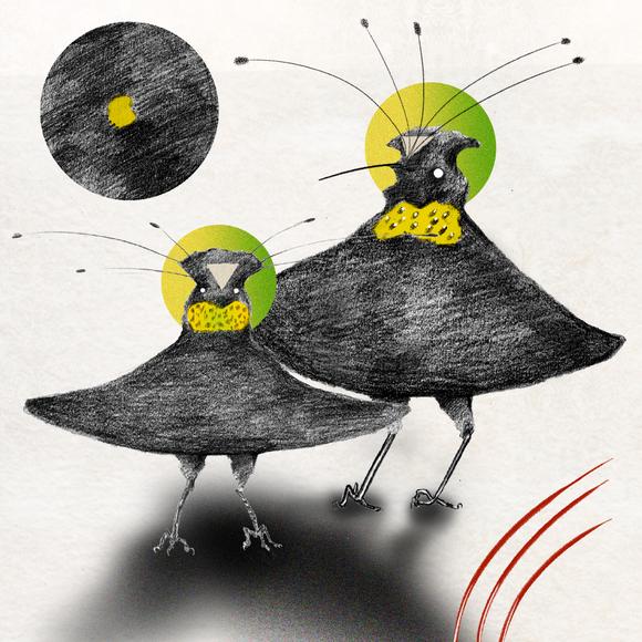 umbrella bird 2.png