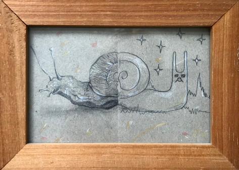 Bipolar Snail