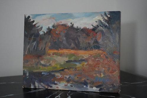 Woodstock Wetlands by Charlie Gaulin