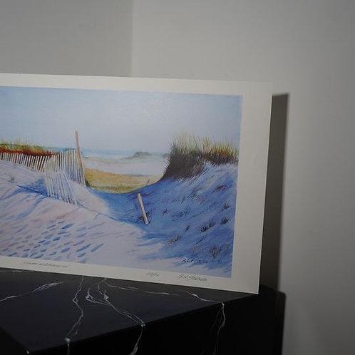 Dunes at Sandwich by Arthur Furtado