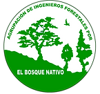 logo_trans_AIFBN_grande.png