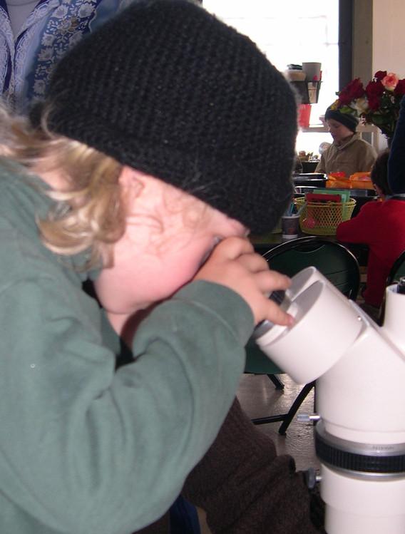 looking in the macroscope.JPG