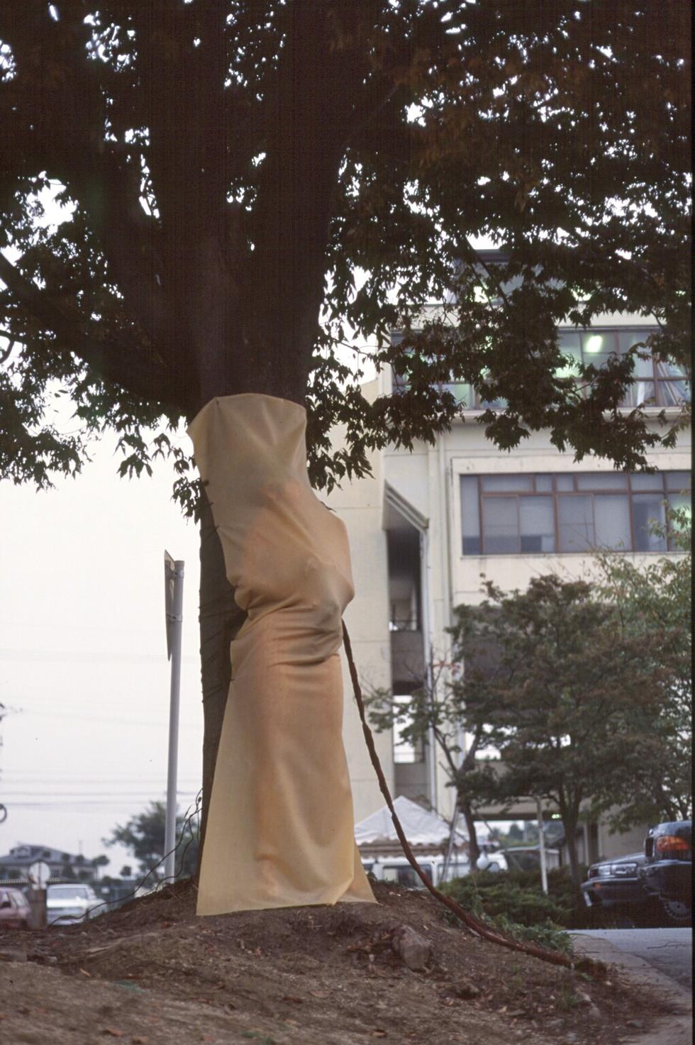 treebirth rubber.jpg