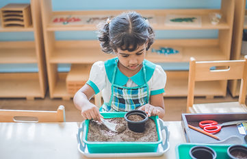 A student attempting to plant a seed.