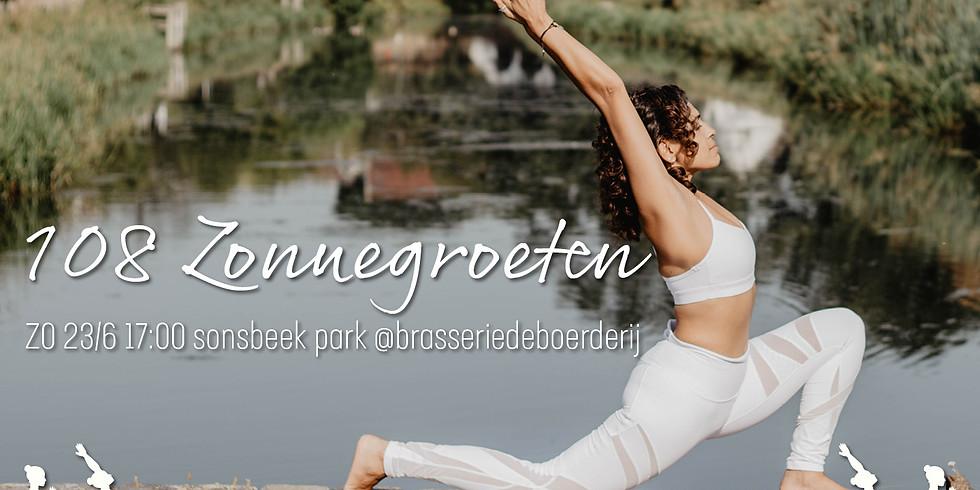 Fierce Calm 108 Zonnegroeten