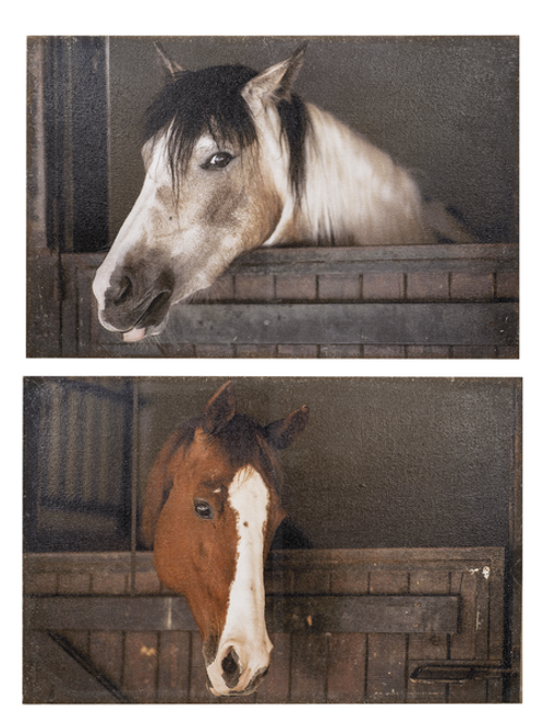 GANZ PAINTED BARN HORSE BURLAP WALL HANGING