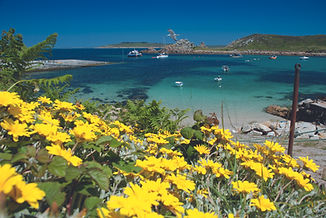 scilly_st-agnes_the-quay-with-flowers_10