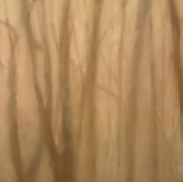 18x36 / Huile / Véronneau / Artiste Peintre