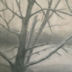 20x28 / Huile / Véronneau / Artiste Peintre
