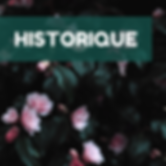 MMF Historique.png