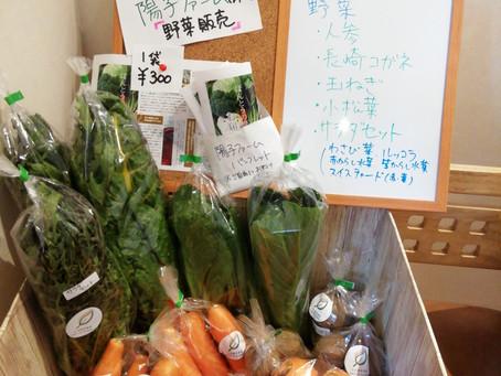 無農薬野菜を売っています(^^♪