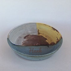 pet bowl Monika.jpeg