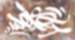 logoweissite.webp