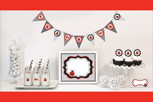 Ladybug Decorations Starter Kit