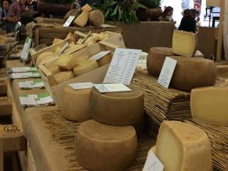 Festa di Cheese
