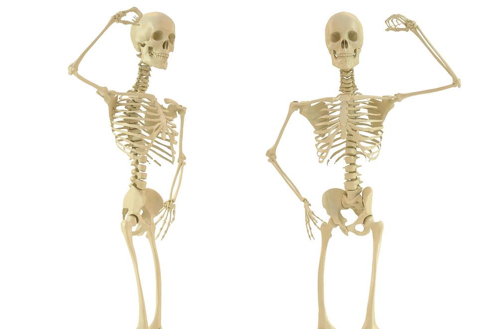 骨盤調整基礎講座