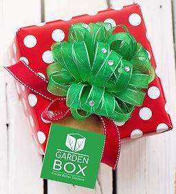 Christmas Box.jpg