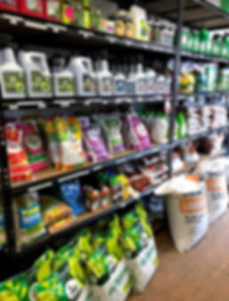 Garden Box - Inside the shop.jpg