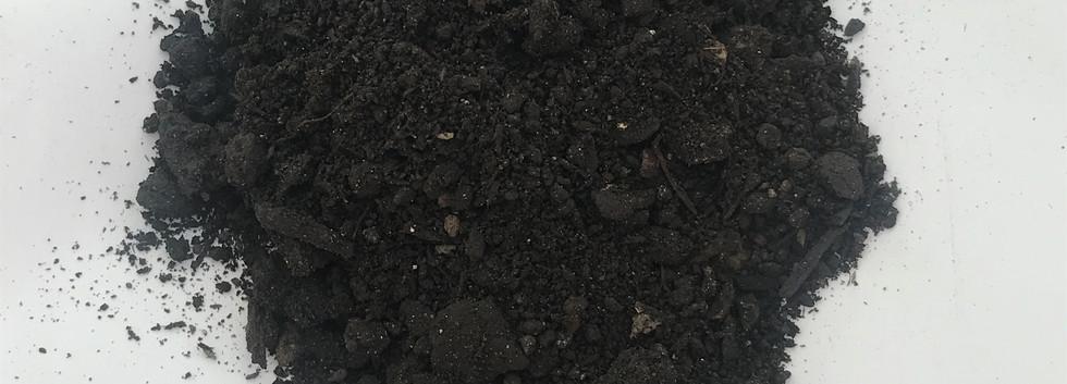 Garden Grow.JPG
