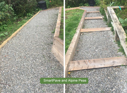 Smartpave and Alpine Peas on Path and St