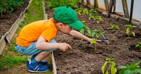 Kids Veggie Garden Claim Your Share.jpeg