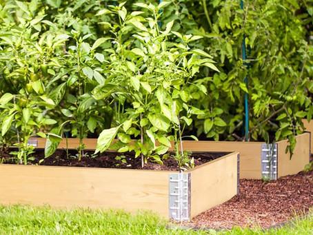 GardenStax - Instant Gardens!