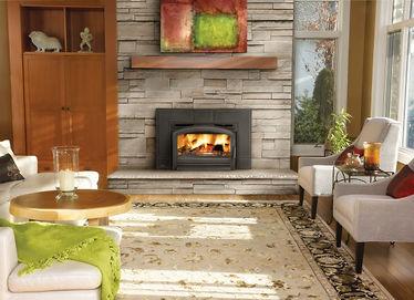 Napoleon Wood Fireplace Insert