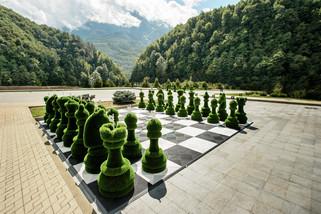 шахматы1 LR.jpg