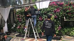 Versace Mansion Miami Vertical Garden