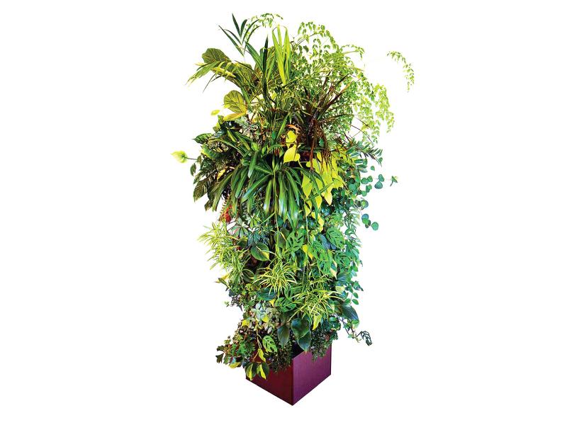 Miami Vertical Garden Living Dad (2)