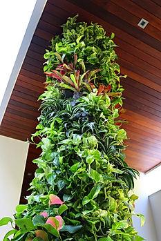 Miami Vertical Garden Miami Living Walls