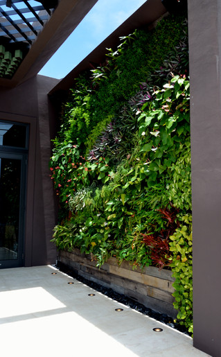 Public Living Wall Benefits