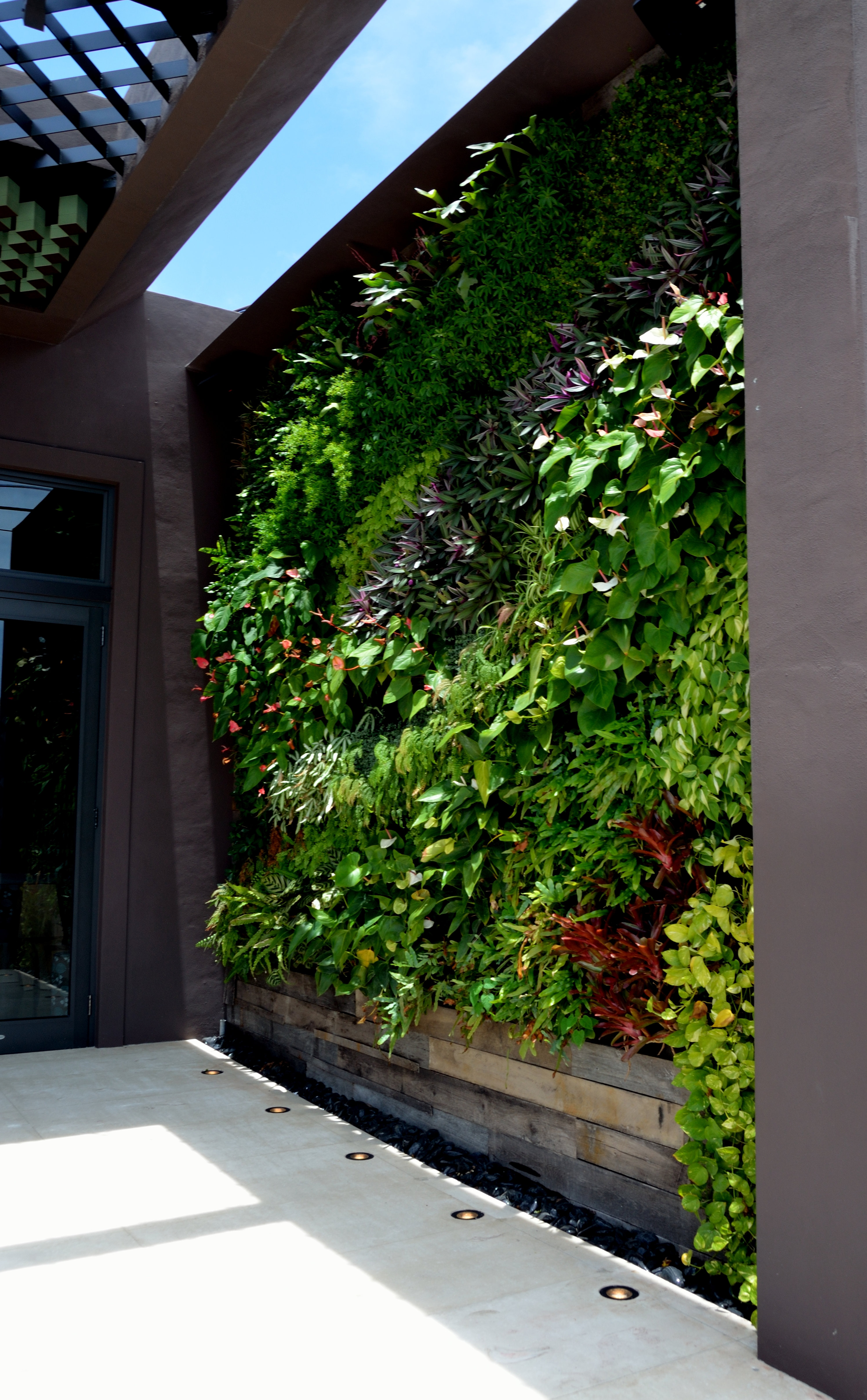 Miami Vertical Gardens And Living Walls Installation